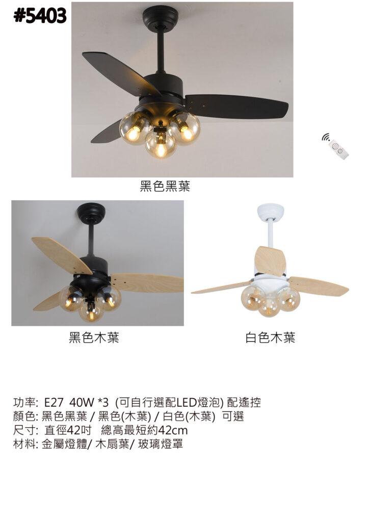 5403 風扇燈